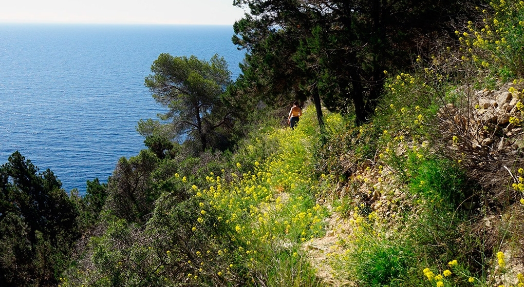 Walking to Cala Llentrisca
