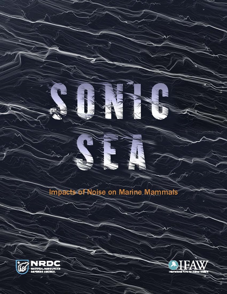 Sonic Sea. Proyección del documental en Sant Antoni