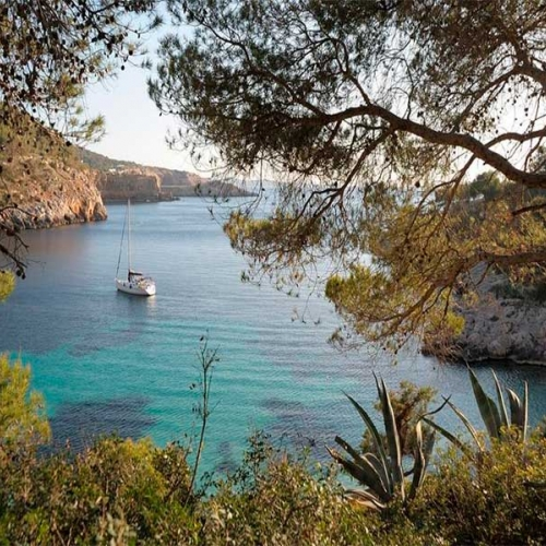 Fantastic ibiza tours plans